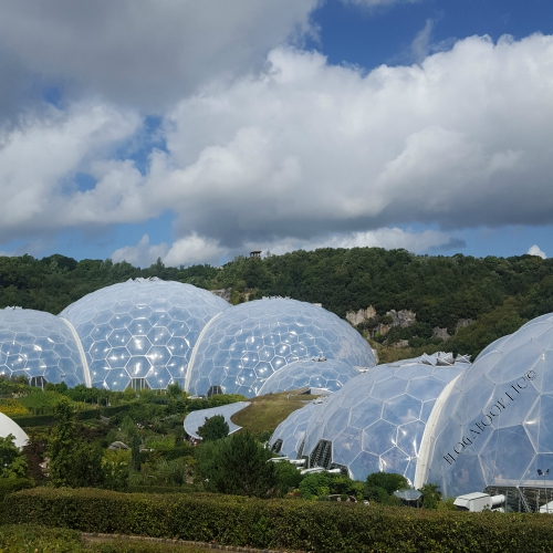 Eden Project, Biomes, Nature, Cornwall, Blog A Book Etc, Fay