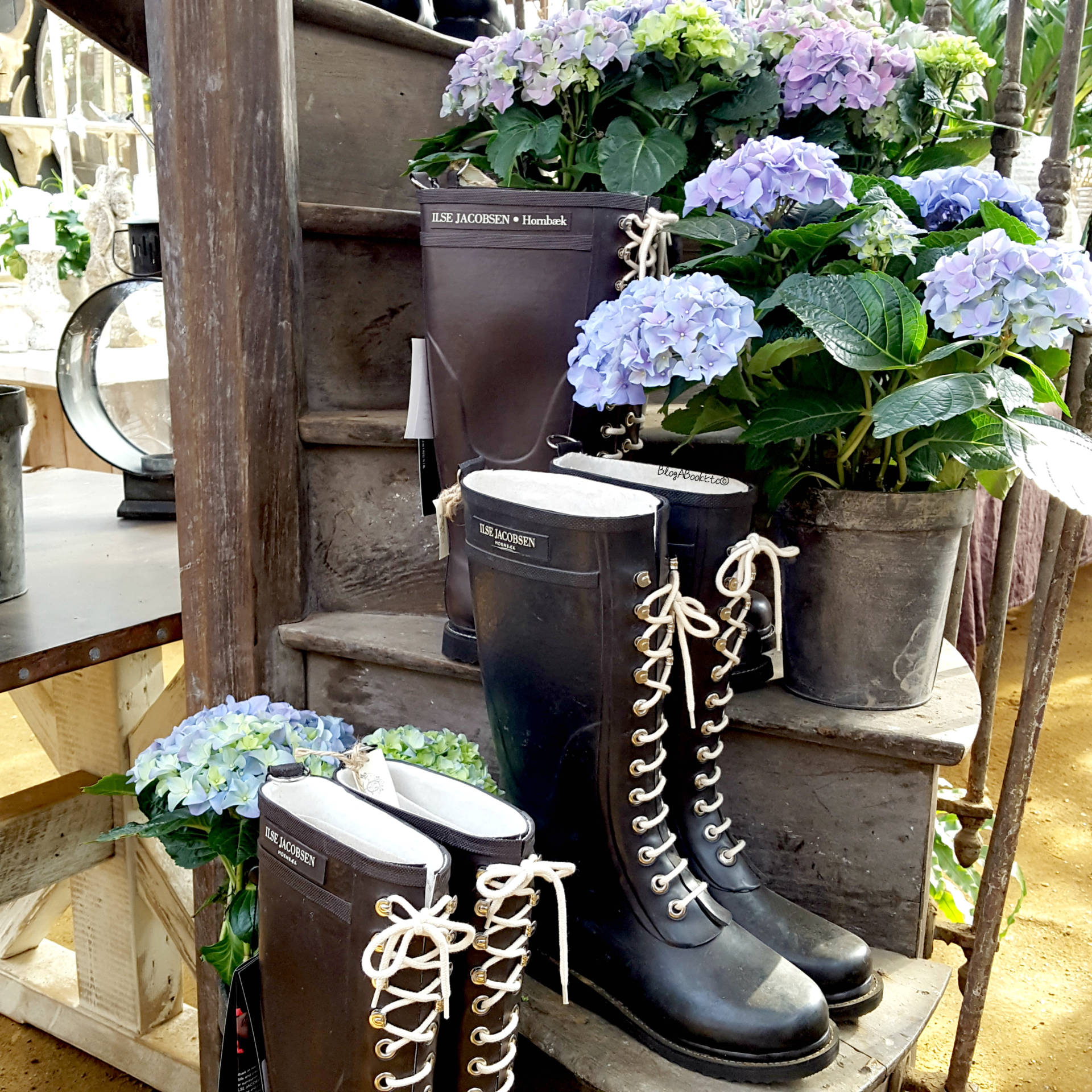 Petersham Nurseries, Petersham, Richmond, London, Surrey, Flowers, Plants, Succulents, Cacti, Cactus, Bedding Plants, Nurseries, Garden, Gardening, Summer, Hydrangea, Wellington Boots, Wellies, Blooms, Bunches, Beautiful, Beauty, Blogger, Life, Lifestyle, Blog A Book Etc, Fay