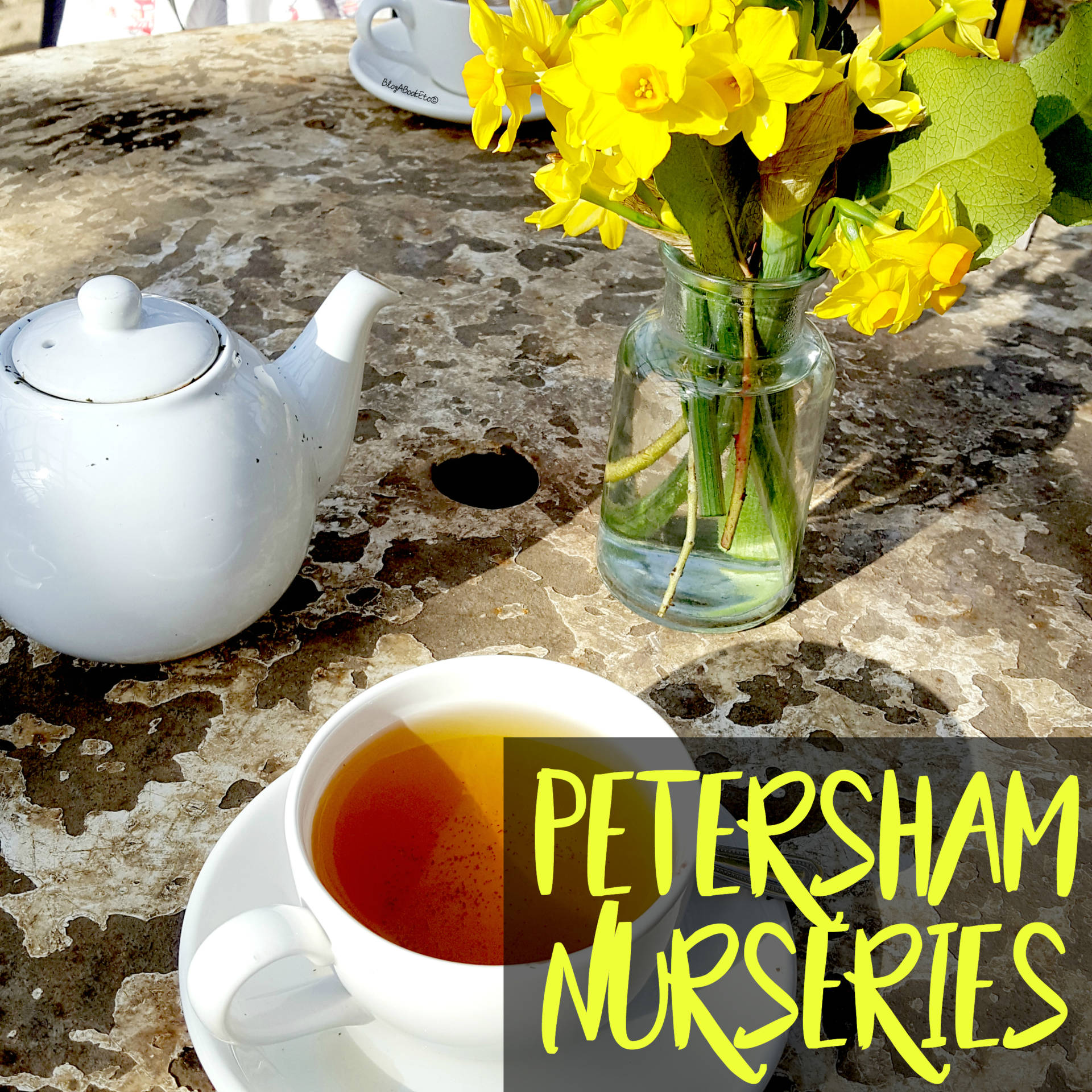 Petersham Nurseries, Petersham, Richmond, London, Surrey, Flowers, Plants, Succulents, Cacti, Cactus, Bedding Plants, Nurseries, Garden, Gardening, Summer, Beautiful, Tea, Tea Time, Daffodils, Tea Pot, Tea Lover, Vintage Table, Shabby Chic, Reclaimed, Beauty, Blogger, Life, Lifestyle, Blog A Book Etc, Fay